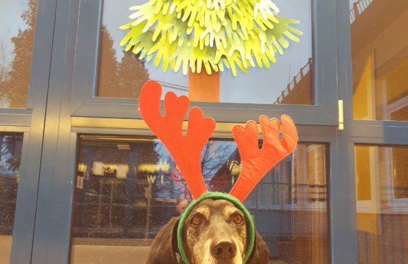 Wir wünsche schöne Weihnachten!